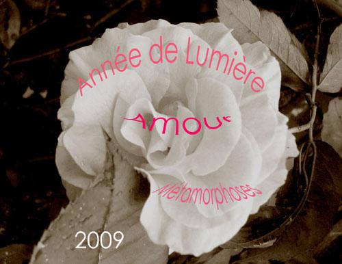 Annee_2009